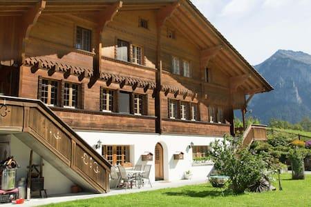 Acogedor Apartamento en Meiringen con vistas a la Montaña