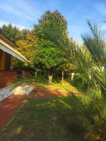La casa del Lagotto vicino al mare