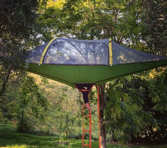 Willow Pond Farm Tree Tents - Kaukapakapa - Overig