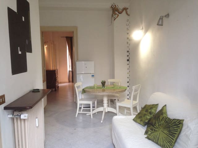 Large private apartment in Turin - Torino - House