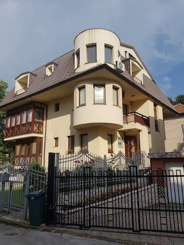 Luxury villa in Sarajevo with garage and garden