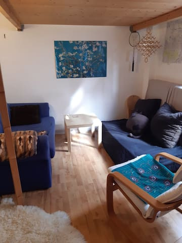 Cozy studio available in Martinsviertel