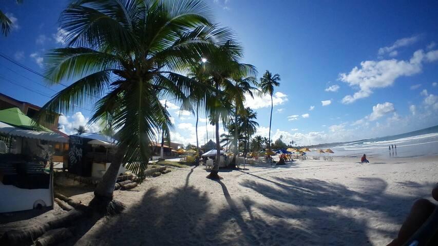 Praia, trilhas, Surf, floresta! Gaibú, Calhetas