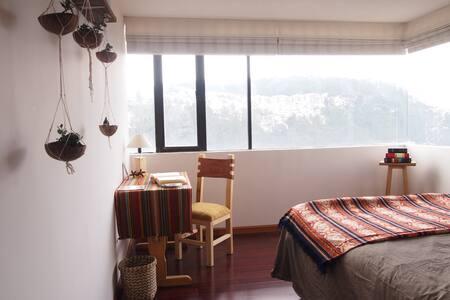 Bright room in pleasant area - Quito