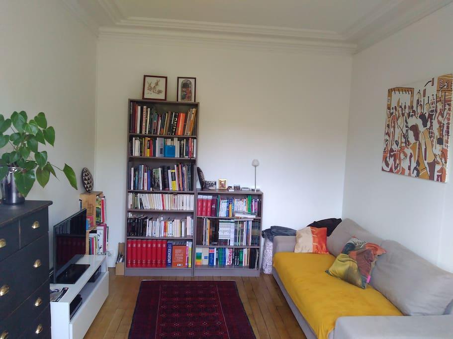 Bibliothèque-salon TV avec canapé-lit