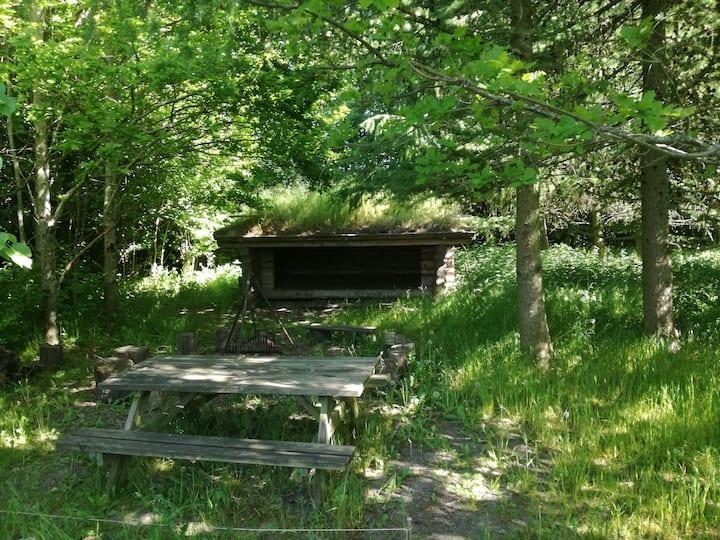 Shelter på marken - ro i naturen
