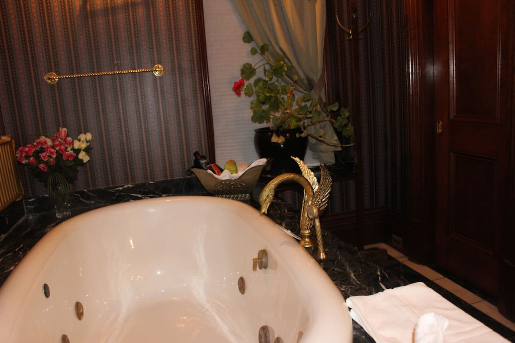 Soacious jacuzzi with one of kind swan faucets