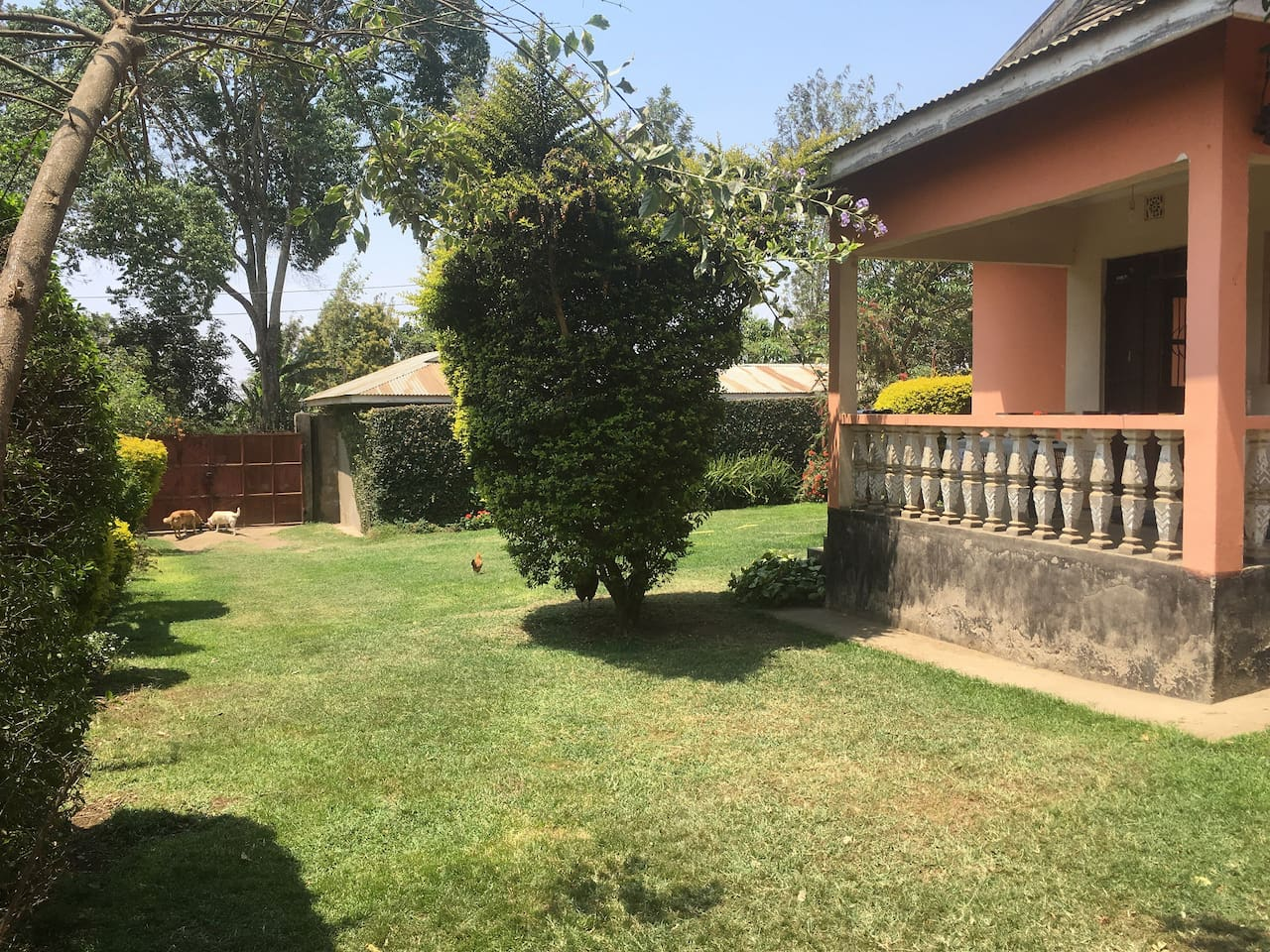 beautiful private house including your own maid houses for rent