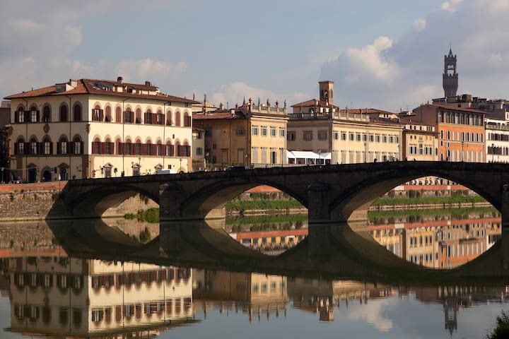 Minerva - A gem next to Arno river
