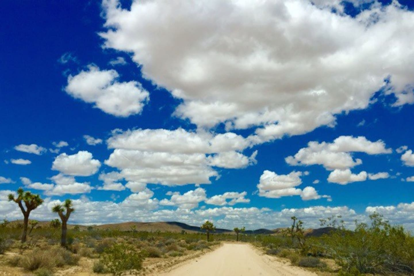 Welcome to Joshua Tree! The wide Open blues skies over turtle rock ranch