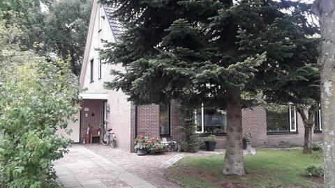 Zolderkamer/etage (다락방) an de bosrand.