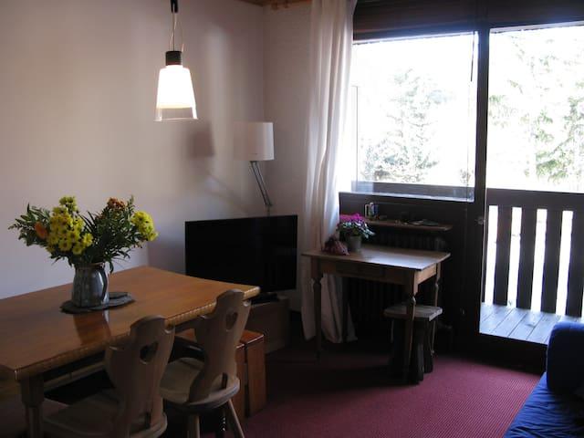 T2 Serre Chevalier la Salle les Alpes - La Salle-les-Alpes - Apartment