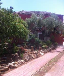 Wonderful uniquely furnished house near the sea - Asopos