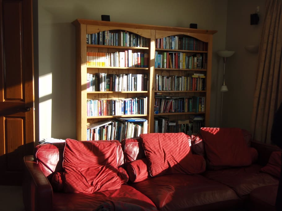 The Lounge has the Latest Technology and a Library of Treasures