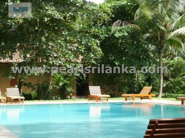 4 Bedroom Bungalow with Pool and Tropical Garden