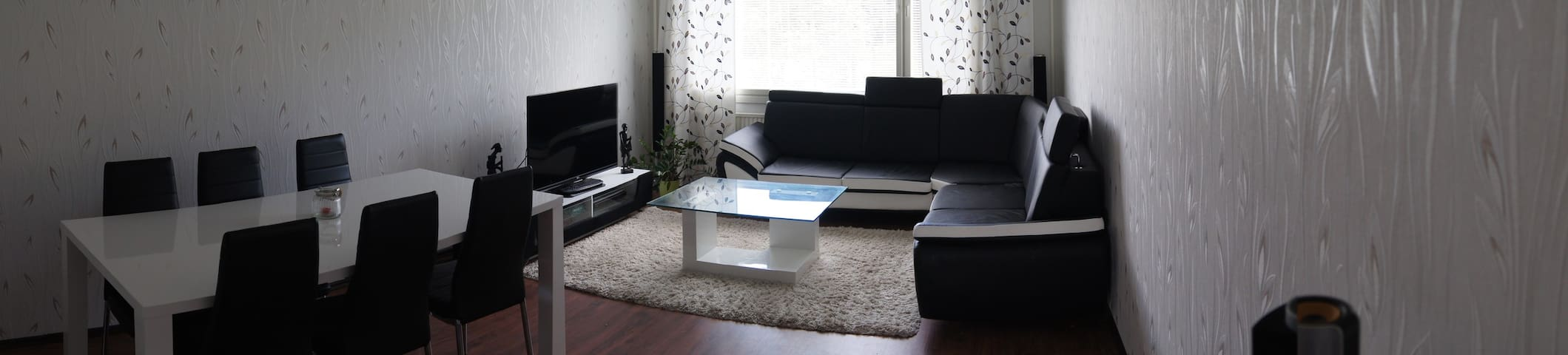 Spacious and comfy apartment full of light! - Åbo - Daire