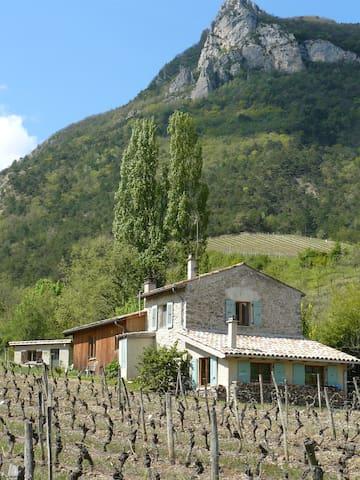 Mooi gelegen huis in wijngaard vlakbij de Drome. - Espenel - Casa