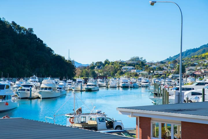 Enjoy the comings and going of Picton Marina