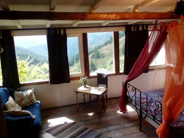 Flexible suite,beautiful view