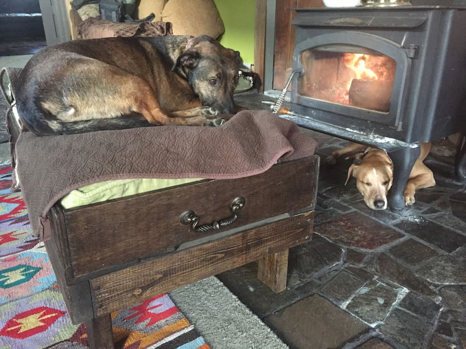 Our dogs Roofus & Clover will be staying next door with Jhon. They love being pet and are also great guard dogs.