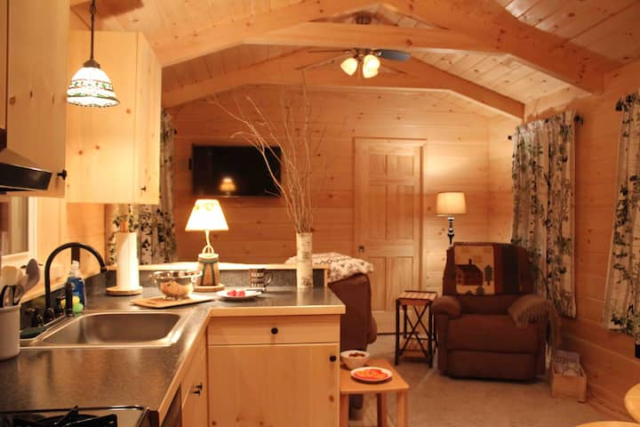 Romantic Adirondack Cabin with Gorgeous Lake Views