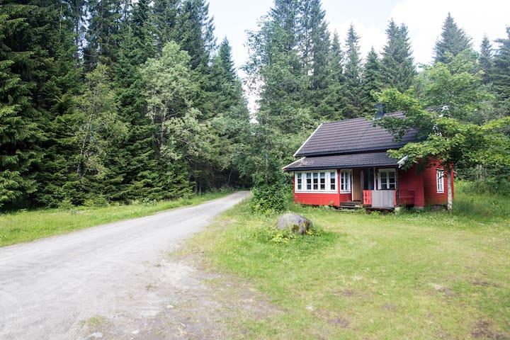 Nesset - Hytte i Hegra, Stjørdal