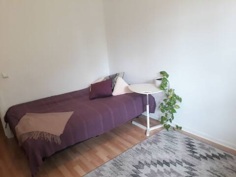 Room in a cosy apartment 15 min walk from city