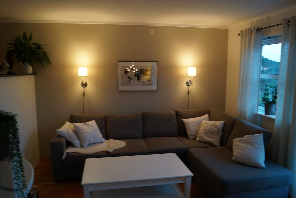 The living room has a sofa that folds out to become a king size bed. There is also a tv in this part of the living romm