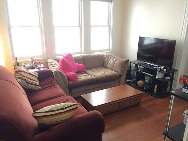 Cozy Room in Brighton, Boston with Free Parking - Boston - Wohnung
