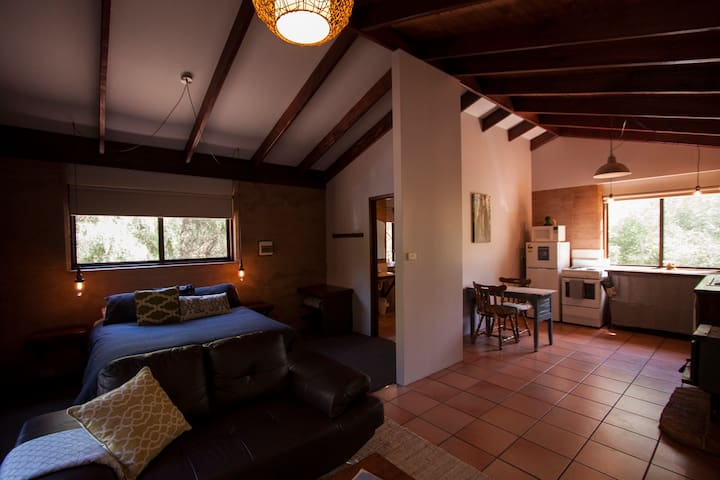 Our open plan living area and kitchen.