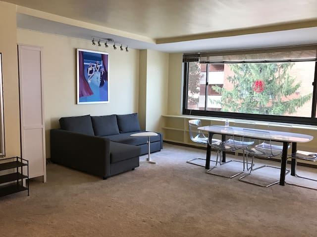 Close to metro-big size one bedroom with balcony - Arlington - Appartement
