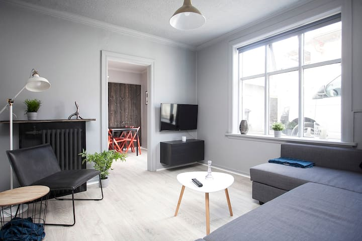 Great value, newly renovated apartment in downtown