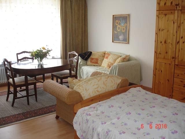 Geräumige Ferienwohnung in Schw. Hall /Steinbach - Schwäbisch Hall - Apartment