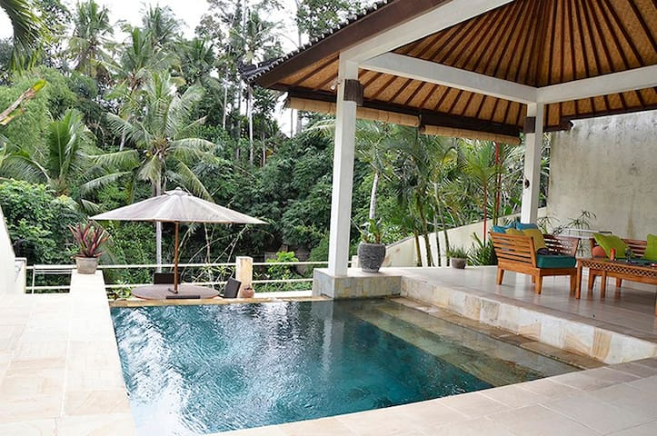 Villa Cenik- Privacy, views, luxury