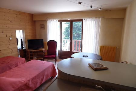 VL43 - Spacious bright and comfort studio with clear views - BRIDES LES BAINS - Lägenhet