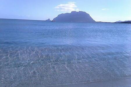 Sardegna: Casa Indipendente super comfortevole - Murta Maria - Hus