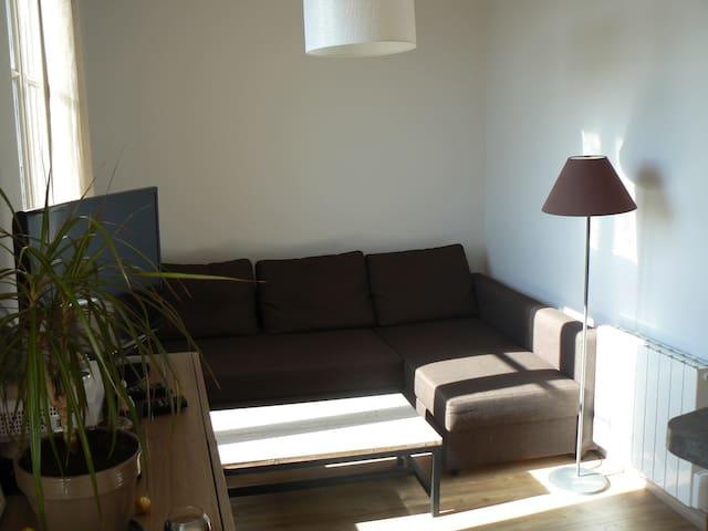Bright apartment - Lyon - Apartment