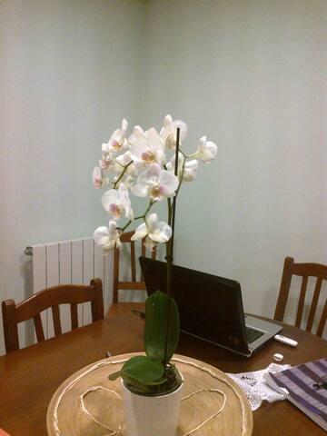 Apartamento muito acolhedor e confortavel - Vila do Conde - Apartament