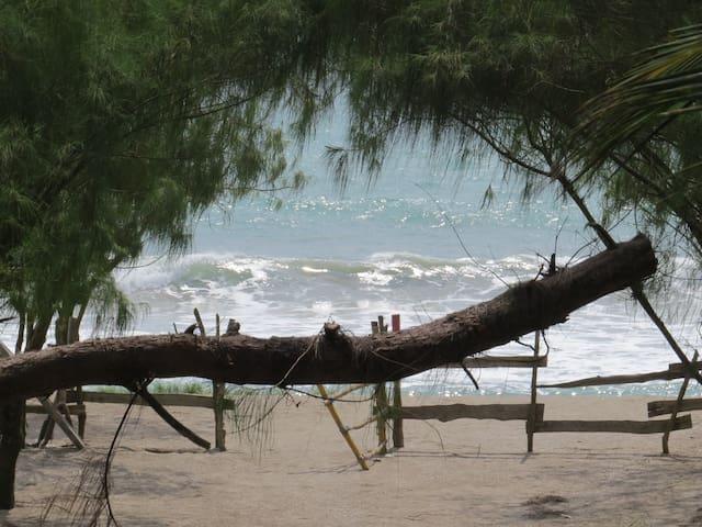 PALO SANTO HOUSE - PRIVATE BEACH