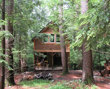 Charming Chestnut Cabin in Woods