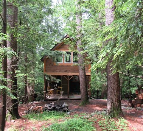 森の中の魅惑の栗小屋