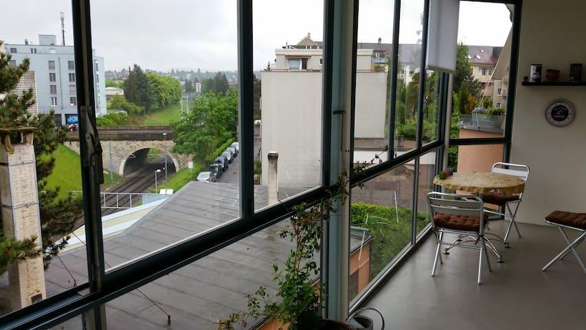 Zimmer in schöner 3 Zi-Wohnung mit Weitsicht - Basel - Lägenhet
