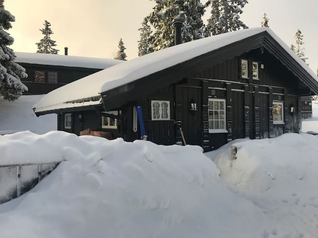 Cozy newly restored cabin. Ski inn/out