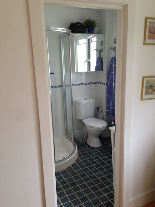Ensuite shower no 1