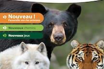 Parc Animalier d'Auvergne à 5kms