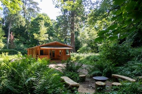 Der alte Steinbruch Somerset — Blockhütte im Wald