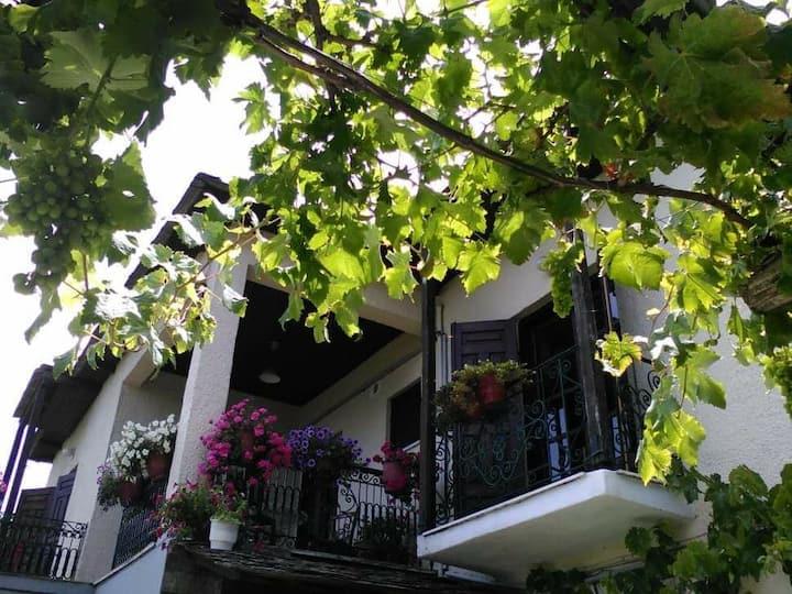 Marina's house Pilion Tsangarada