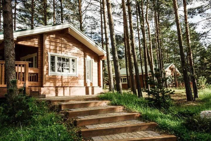 Уютный коттедж среди сосен на Финском заливе