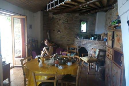 Fondale habitation principale - Tallone