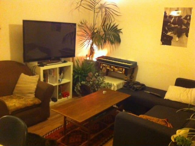 Double Room in Hackney! - London - Leilighet